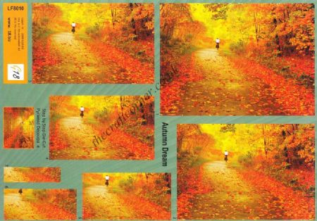 Autumn Dream, A Bike Ride Through Autumn Leaves Pyramid Die Cut 3d Decoupage Sheet